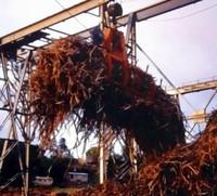 грейфер для сахарного  тросника